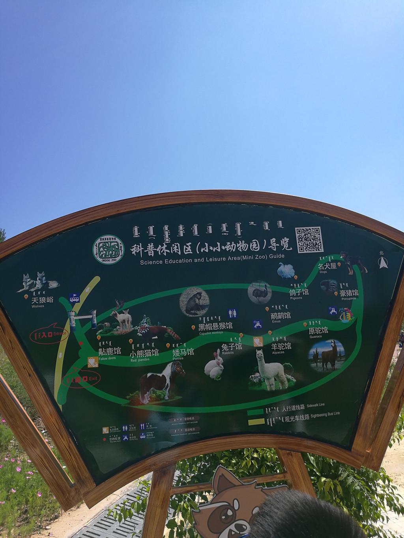 鄂尔多斯动物园之小小动物园