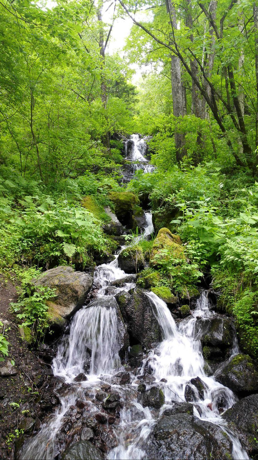 望天鹅风景区位于长白山十五道沟望天鹅峡谷内,望天鹅山海拔2051.