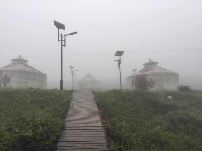 雾里的白草坪