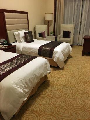 芜湖海螺国际会议中心