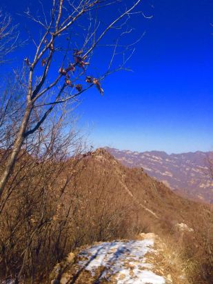 夏天山里风景图片