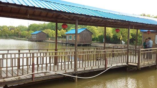 家庭亲子 农庄在陈海公路边上,小木屋建在池塘上,环境还不错,酒店老板