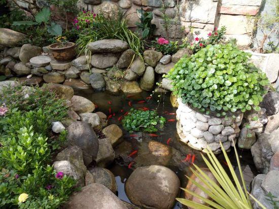 一樓有個小花園,出太陽泡杯茶,和朋友聊天打鬧別有一番味道.